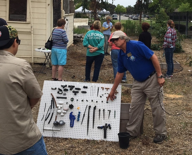 Harry Lee wearing a blue MG polo shirt pointing to an item on his homeade display board with stakes, tubes and valves.