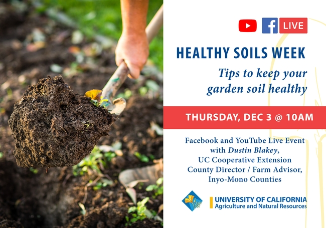 Thursday, Dec., 3 at 10 am, Tips to keep your garden soil healthy. Speaker Dustin Blakey