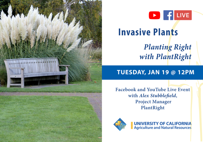 Planting Right with PlantRight, LIVE on Jan. 19 noon, Facebook and YouTube
