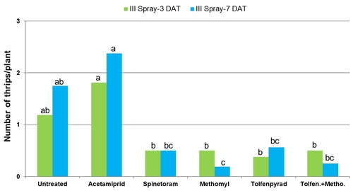 2011 Lettuce thrips graph-Third spray