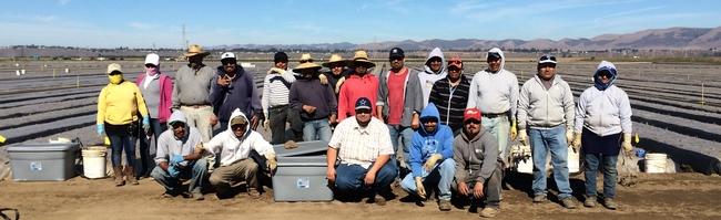 Manzanita field crew