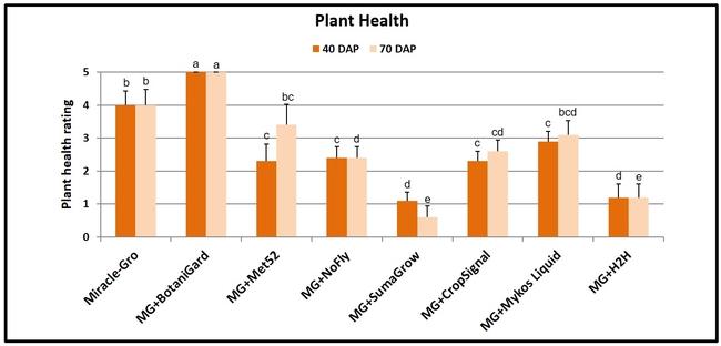 Plant health-Surendra Dara
