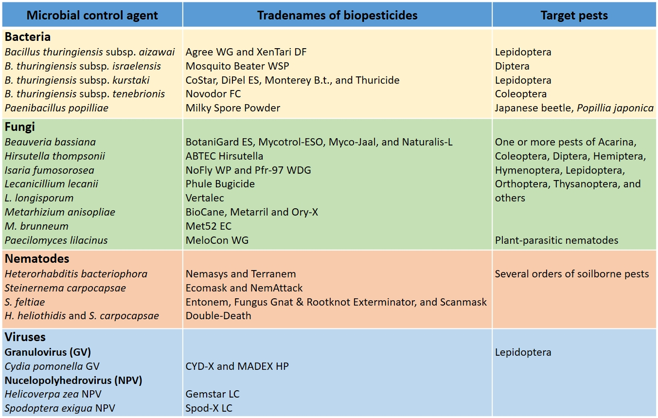 Entomopathogenic microorganisms: modes of action and role in