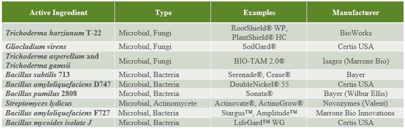 Biopesticide development, registration, and commercial