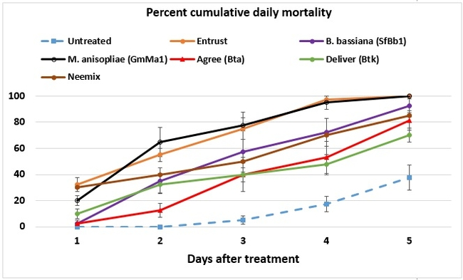 Cumulative daily mortality
