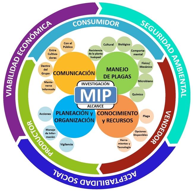 Nuevo modelo MIP