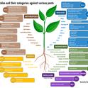 Biopesticide categories-Surendra Dara