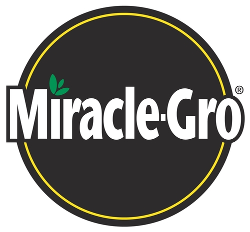 What about Miracle Gro as a fertilizer for strawberries?