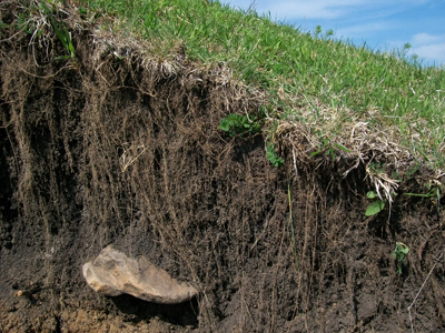 soil weathered from rock