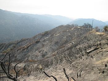 fire NRCS damage