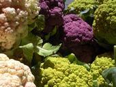 Different types of cauliflower