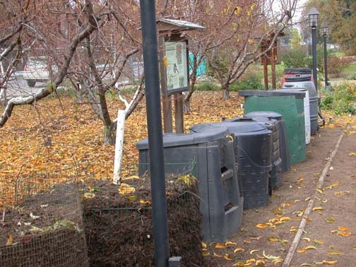 Sample compost bins
