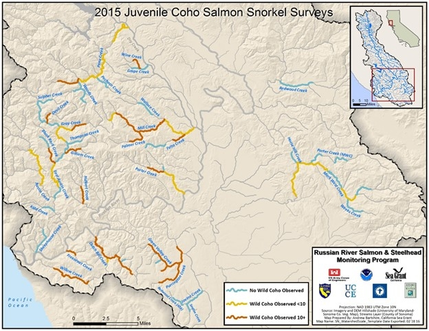 2015 Juvenile Coho Salmon Snorkel Surveys map