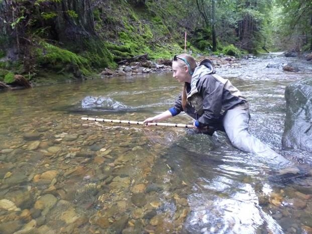 Jenna, a member of Watershed Steward Program Americorps, is is measuring an adult salmon nest(redd) on Redwood Creek