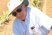 Dr. Robert Norris, professor emeritus and vegetable crops weed specialist, UC Davis Dept. of Plant Sciences (photo by P. Cavanaugh)