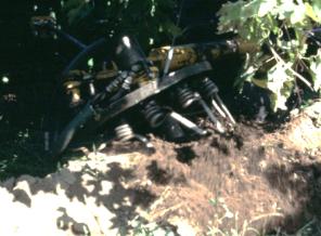 Figure 2. Weed badger