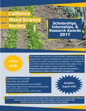 CWSS Scholarships 2017
