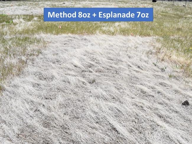 Method + Esplanade