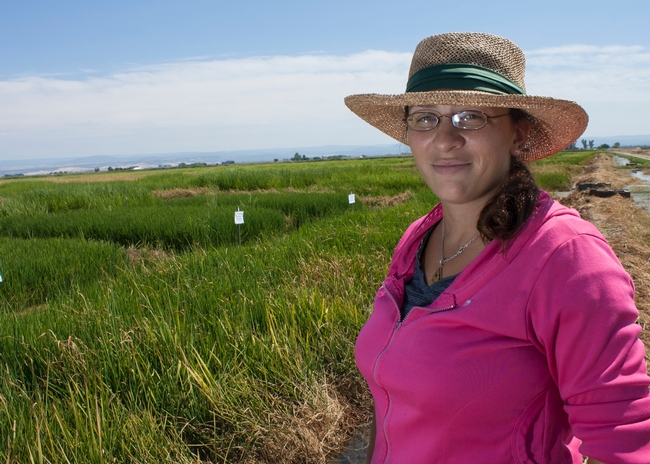 UCCE Rice Advisor Whitney Brim-DeForest