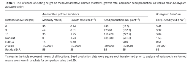Palmer seed production following handweeding