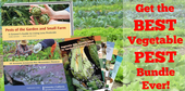 Photo of Pests of the garden and small farm book and Vegetable pest identification cards.