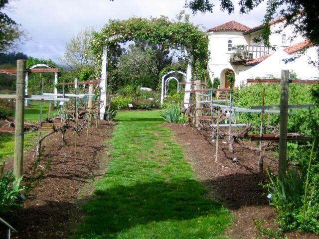 path view of garden villa