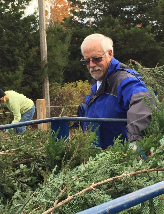 Ken is properly placing the boughs into the trailer.