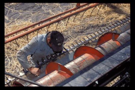 worker inspecting combine rake