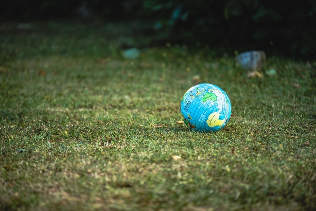 Picture of a globe of the world on a field of grass.