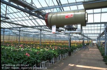 ABC's of Fertilizer and Irrigation Management - UC Cooperative ...