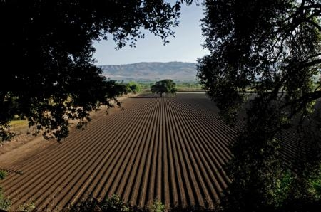Ventura County has approximately 2,500 of the 81,000 farms in California.