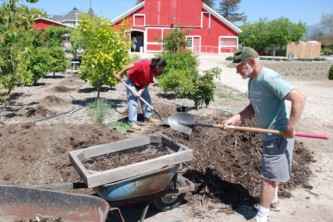 Time spent preparing soil in the garden is well spent. Healthy soil provides nutrients and promotes healthy root growth.