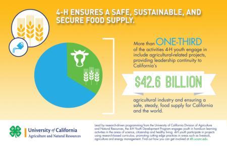 4-H Impact - Food Security