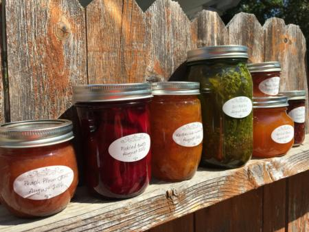 Jams and Pickles on a fence 2