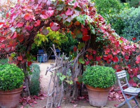 California Friendly Gardening 18