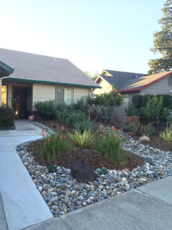 California Friendly Gardening 26