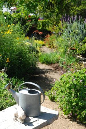 California Friendly Gardening 33