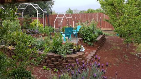 California Friendly Gardening 34