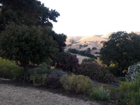 California Friendly Gardening 41