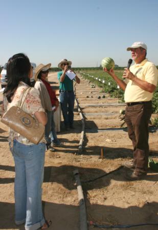Molinar field presentation on mini, seedless watermelons