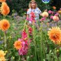 California Friendly Gardening 6