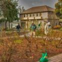 UC Master Gardener in Action 5