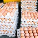 Fresh Eggs in Cardboard Crates