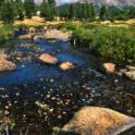 Stream Running through Tuolumne Meadows