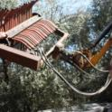 Hutchinson canopy-sharing harvester in olive orchard: Art Hutchinson and Uriel Rosa, UC agricultural engineer