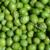 Experimental olive harvest: Close up: sample from the truncated chute at low head speed