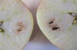 Apple, Honeycrisp Carbon Dioxide Injury