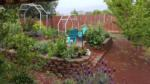 California Friendly Gardening 34