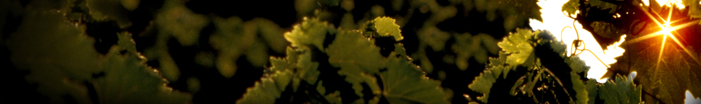 Riverside County