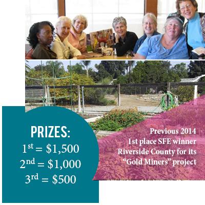SFE Prizes
